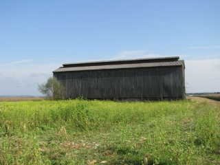 The last remaining tobacco barn in our neighbourhood